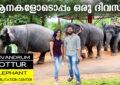 Kottur Kappukadu Elephant Rehabilitation Centre